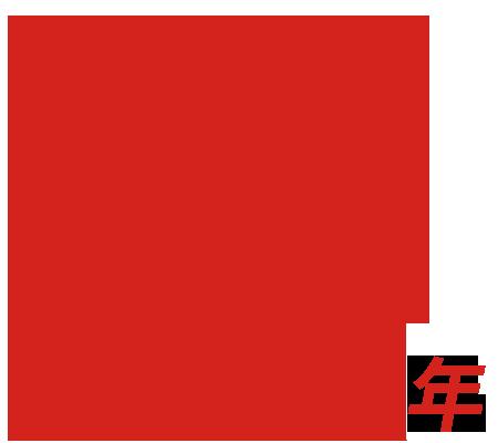 15年网站建设公司