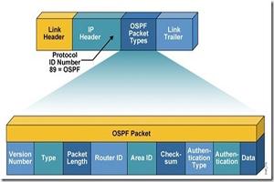 OSPF的五种分组类型