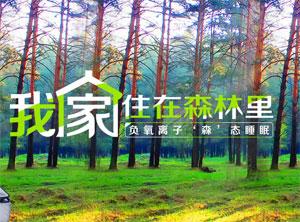 【签约】深圳市玺堡家居有限公司网站建设