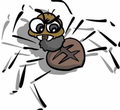 """搜索引擎Spider到底会不会""""爬""""?"""
