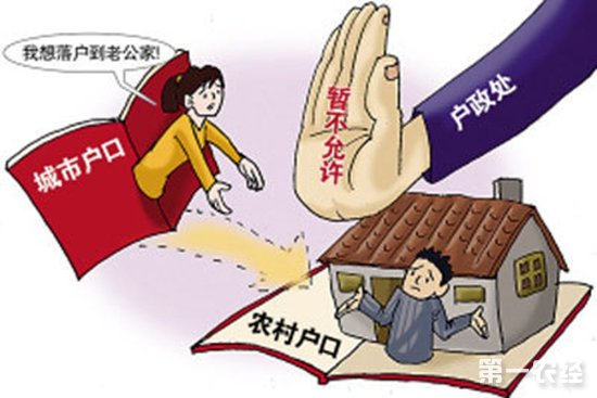 中国农民农村户口的含金量在哪里?