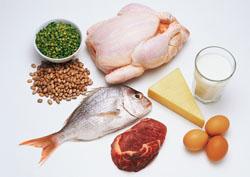 人类食物是怎样被消化的?