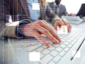 IT软件网站建设方案